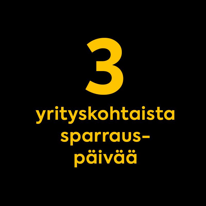 Kolme yrityskohtaista sparrauspäivää